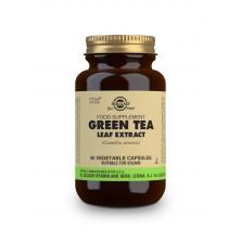Solgar Green tea – Zelený čaj cps. 50